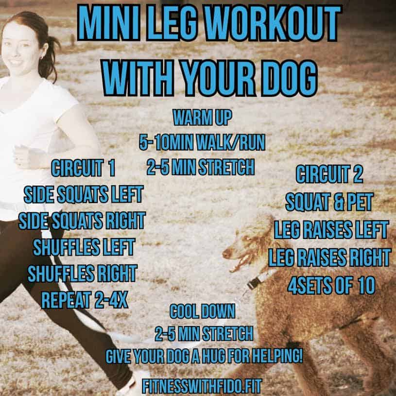 Mini Workout with Your Dog