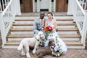 My Wedding with Dogs