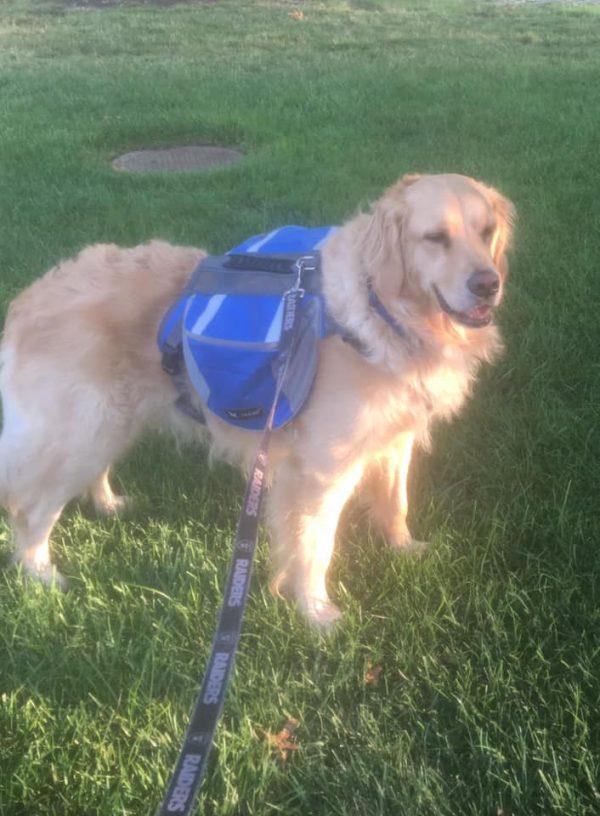 bailey backpack
