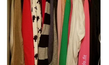 New Year Closet Organization Tip