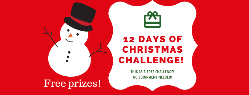 12 Days of Christmas Challenge