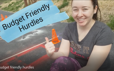 DIY Budget Friendly hurdles